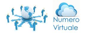 numero virtuale